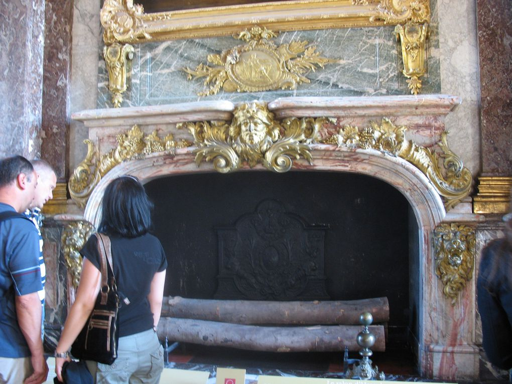 Des félins au Château de Versailles !