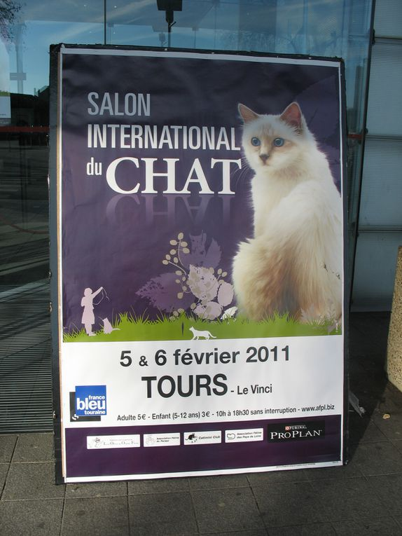 Salon International du Chat à Tours en le 5,6 Février 2011