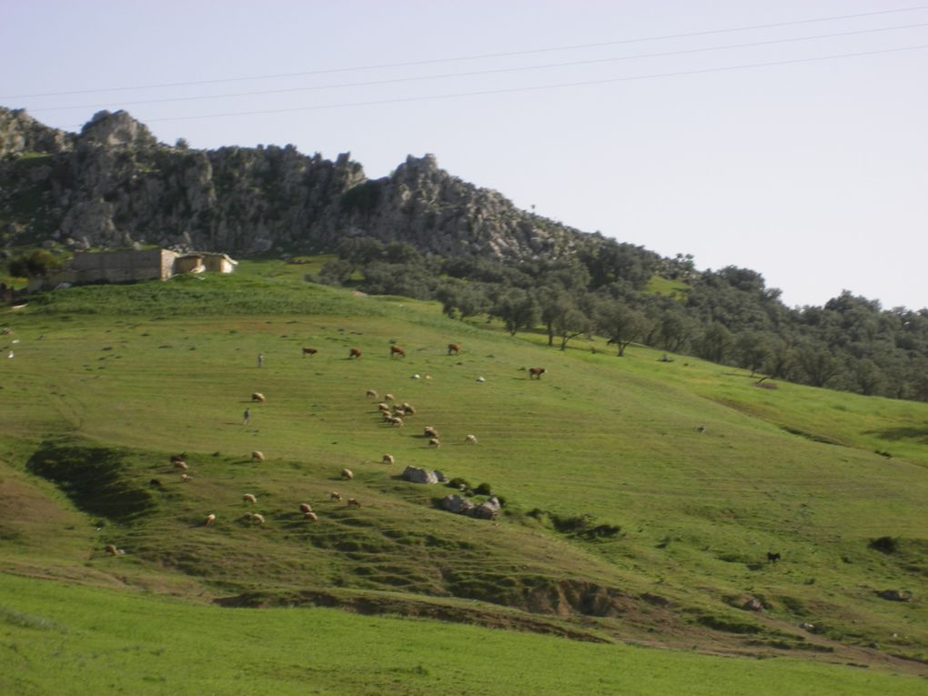 vacances maroc mois 4 annee 2011
