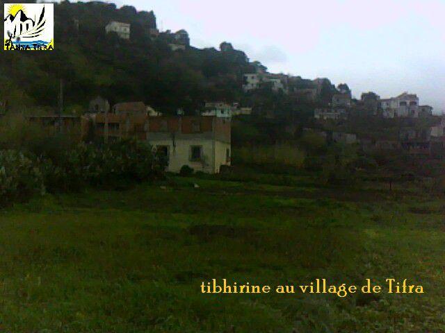 Album - Photos du village de Tifra