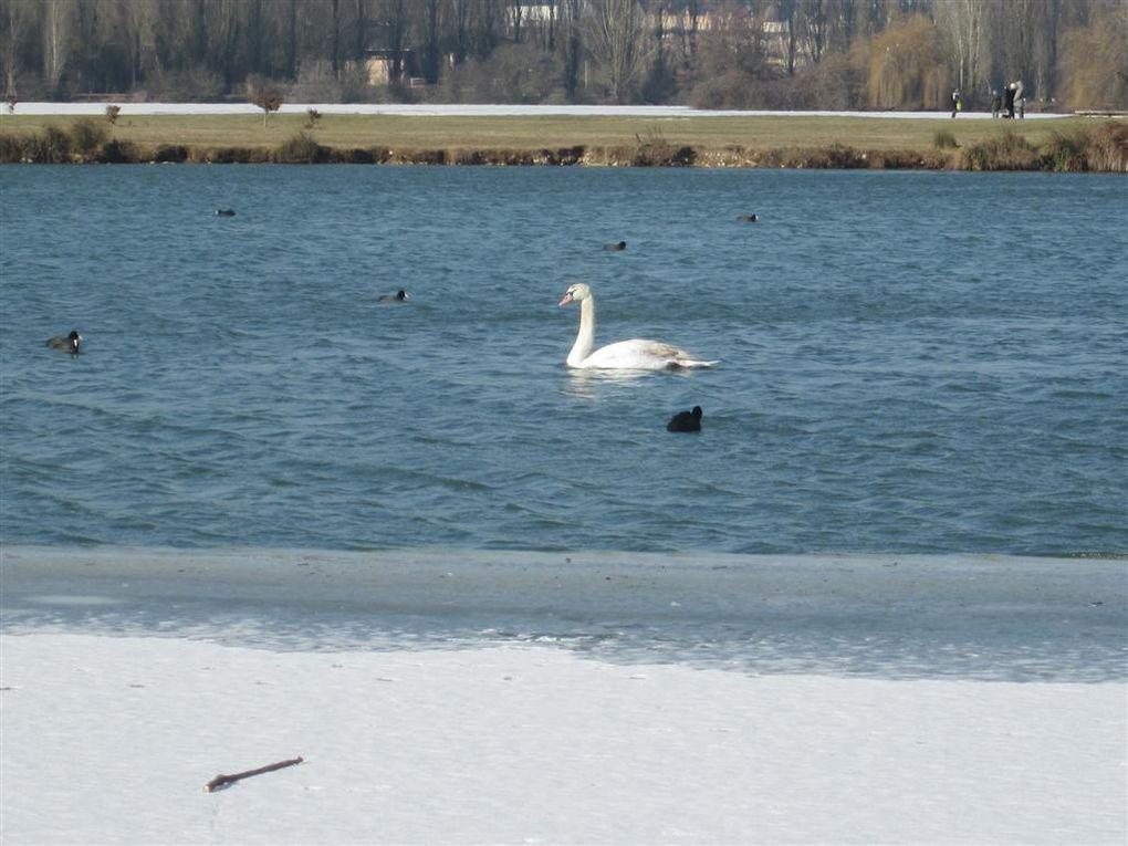 le lac du Val d 'Auron, par temps de neige