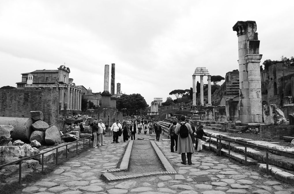 Album - ROME ANTIQUITE