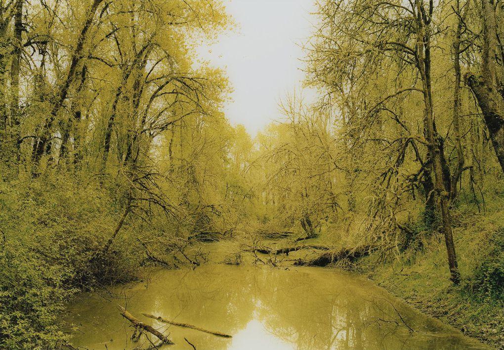 Album - XXIe