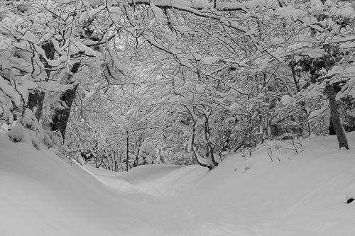 Album - Puy-de-Dome-ski-de-rando-12-fevrier-10-