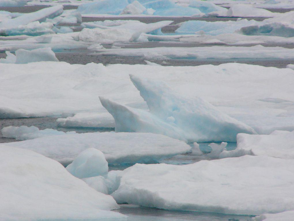 Album - Groenland-2005