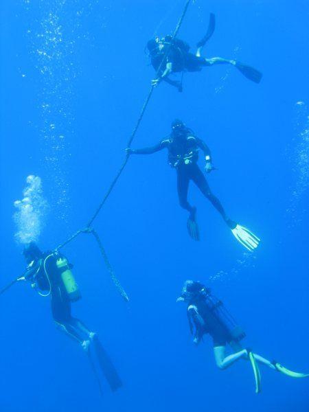 épave coulée en face du site de la Baleine, par 35 mètre de fond!