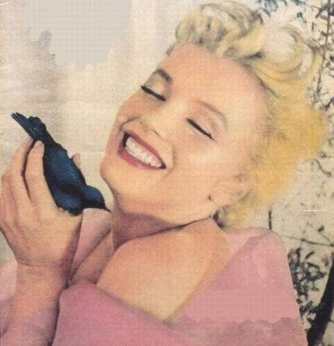 De Norma-Jeane à Marilyn,une vie en images(suite)