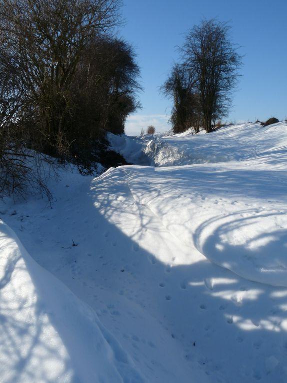 La fin décembre 2010 fût pour nous tous synonyme d'un hiver plus que rigoureux. Rappel en images...