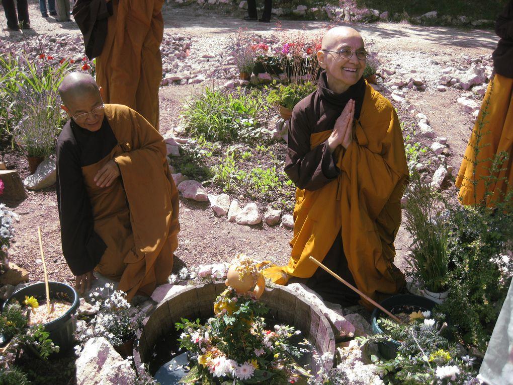 Célébration de l'anniversaire du Bouddha
