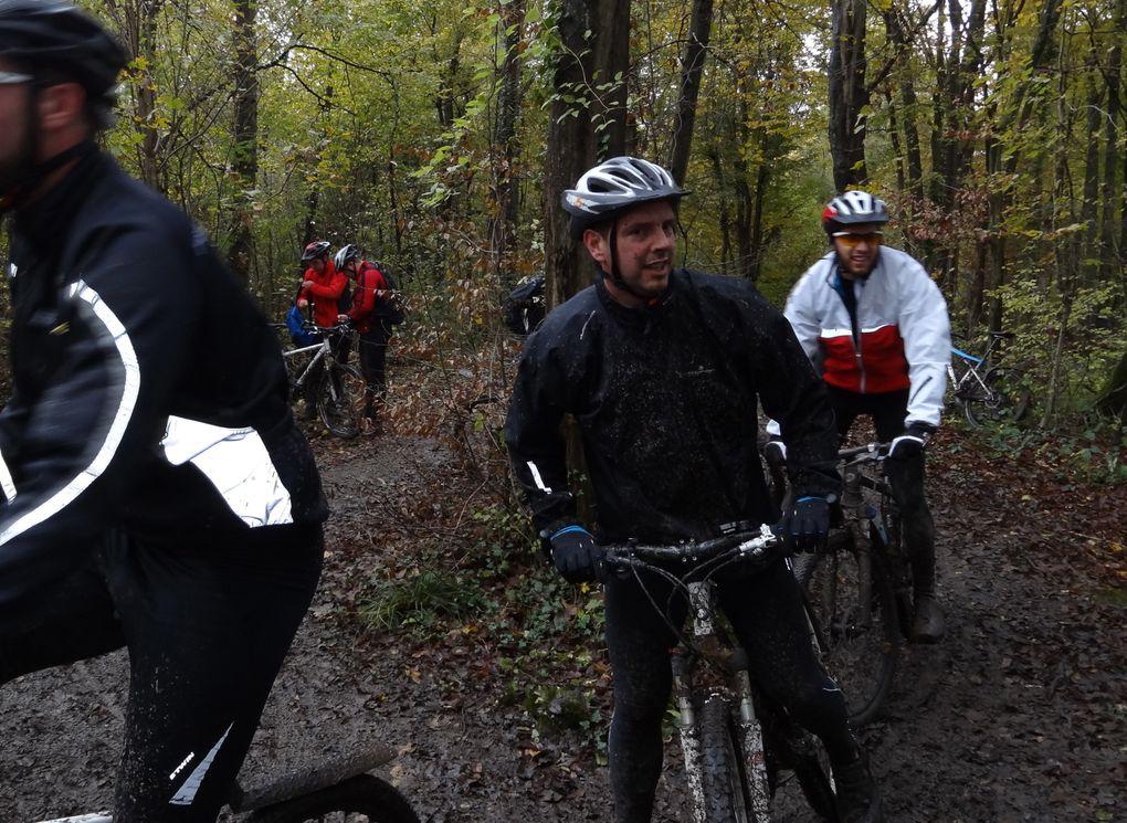 15ème édition de cette randonnée VTT,dite la  TransMontgeronnaise,  en forêt de Sénart, dimanche 10 novembre .