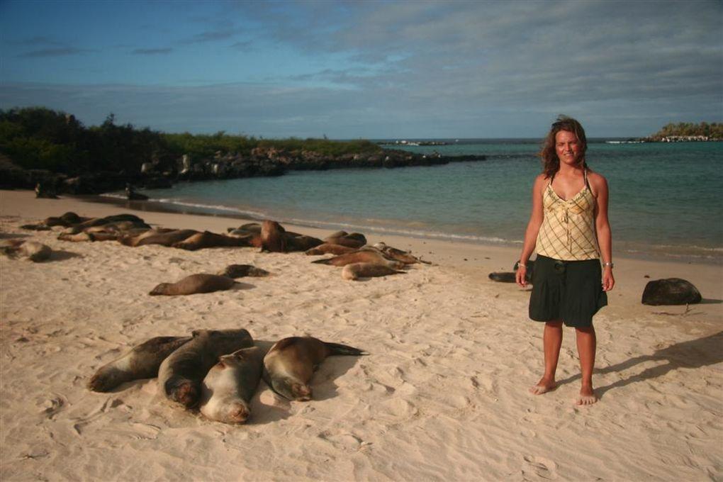 Album - Iles-des-Galapagos