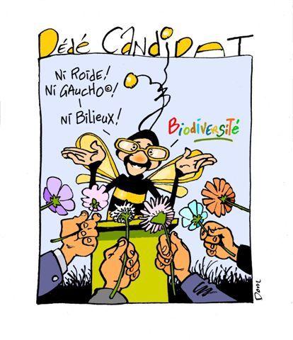Album - Dédé l'Abeillaud