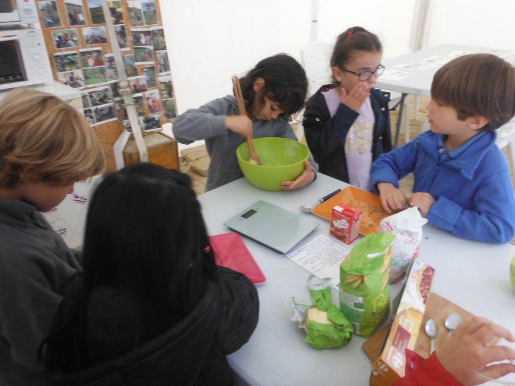 Des ateliers de la maternelle à l'université sur les thèmes de l'habitat, du jardin et de l'alimentation, encadrés par des animateurs pédagogiques diplômés.