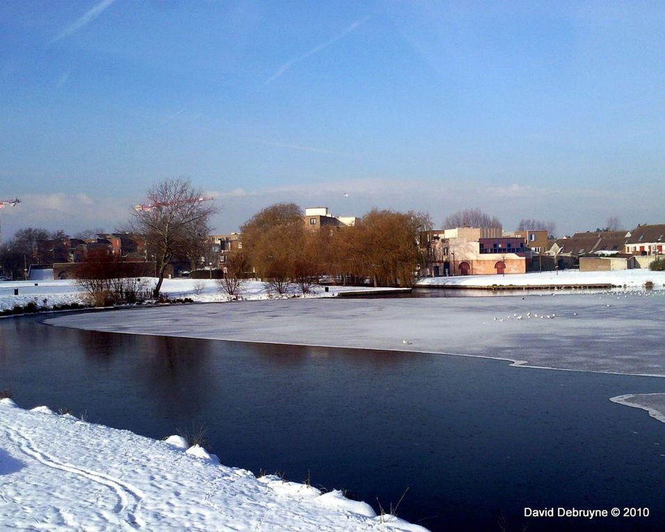 Quelques photos de Grande-Synthe  sous la neige. Nous avons la chance d'avoir une ville avec de nombreux espace vert qui au fil des années nous en perdons pour laisser place a une urbanisation massive voulu par notre maire