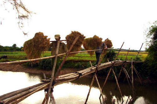 """Suivre la chanson """" Quê Hương """" Mon pays natal pour mieux connaitre les images de pays.TSD"""
