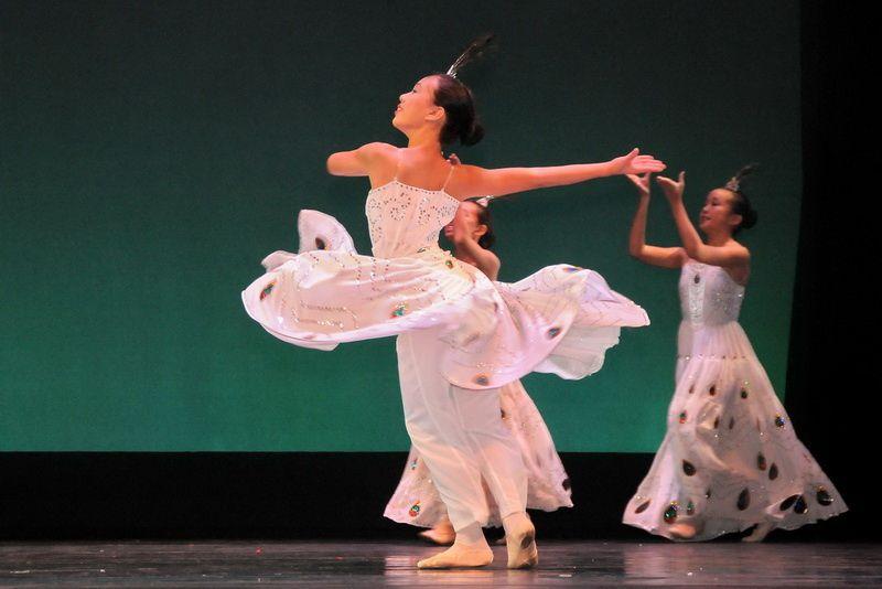 Une vitrine de la richesse culturelle de la Chine, Dance of Asian America collabore avec des artistes de la Compagnie de danse de Shanghai pour mettre tous de nouvelles chorégraphies. Exposition présente également les danseurs talentueux de Mitsi