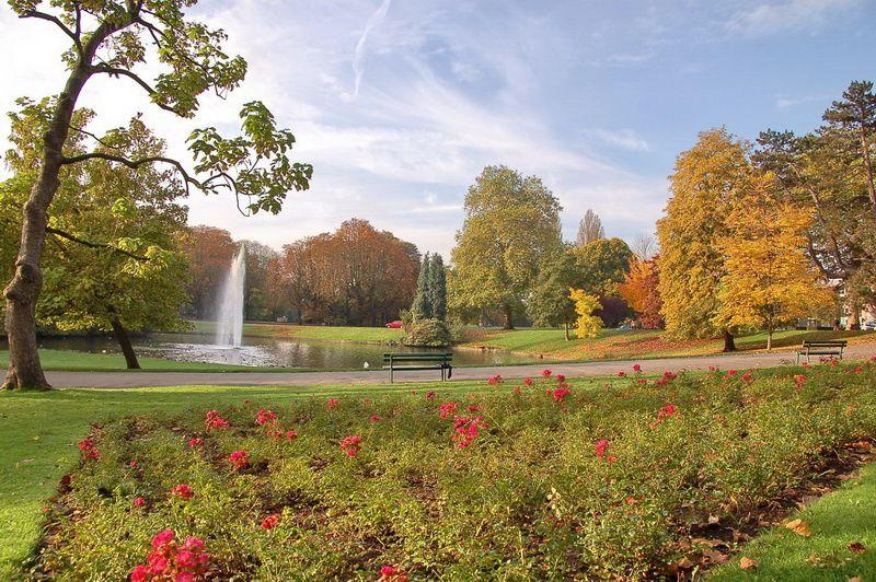 l'automne est si beau ! Au royaume du symbolisme, la saison est rayonnante... Photos TSD