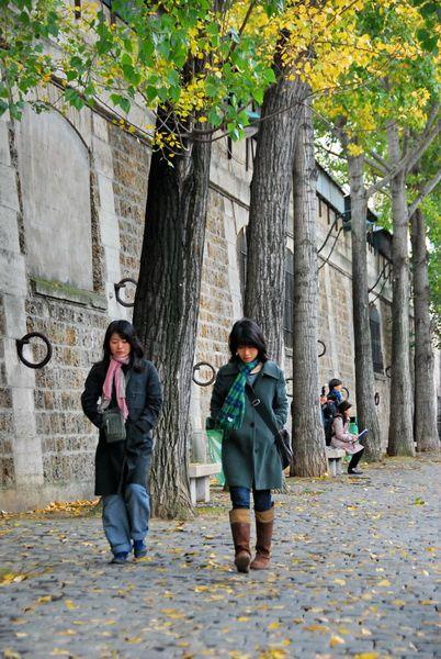 Faire à pied les bords de Seine à Paris.j'adore l'automne à Paris...Paris romantique !Souvenirs 2010 d'une balade d'automne à Paris et sur les quais de Seine . Photos TSDVoir:Album Automne à Paris