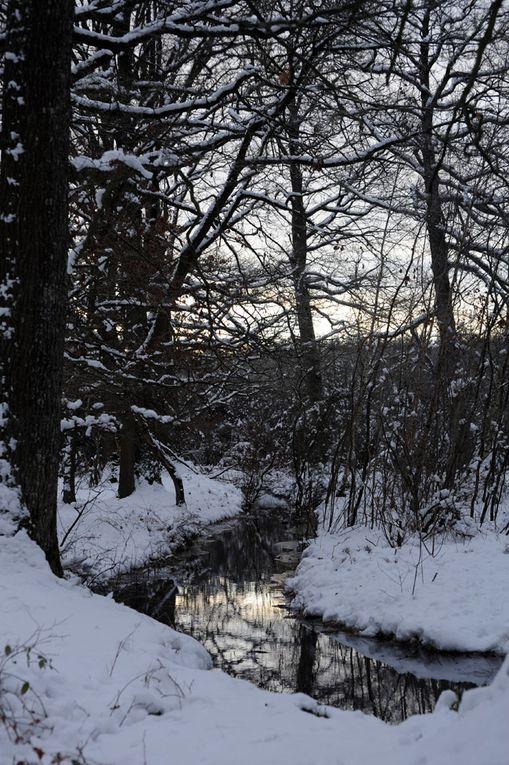 Album - d'hiver