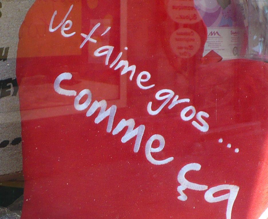 En région Champagne Ardenne de mi novembre a fin décembre dans Reims et les villages aux alentours !