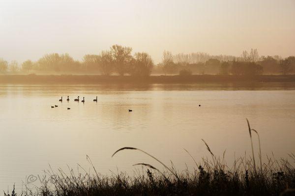 Album - Loire