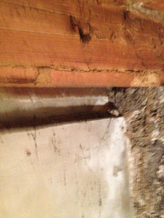 Album - &quot&#x3B;Photo traitement des termites&quot&#x3B;