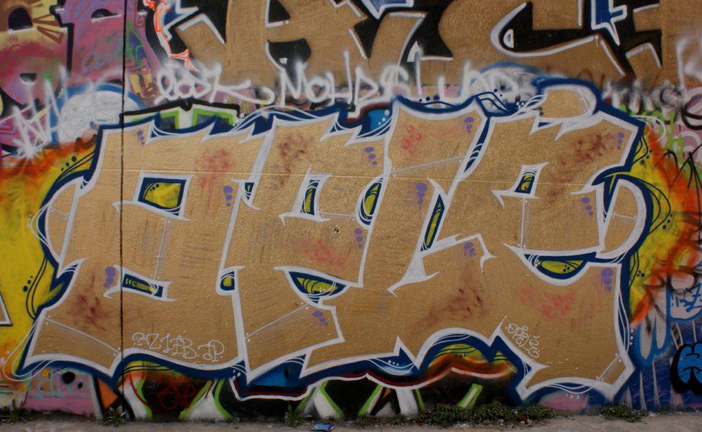 Album - Graffitis-Paris-divers-Tom-022