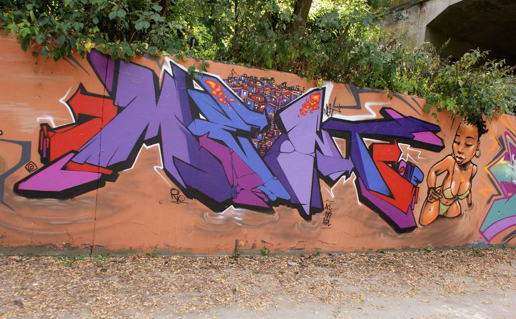 Album - Graffitis-Dept-91-divers-tom-009