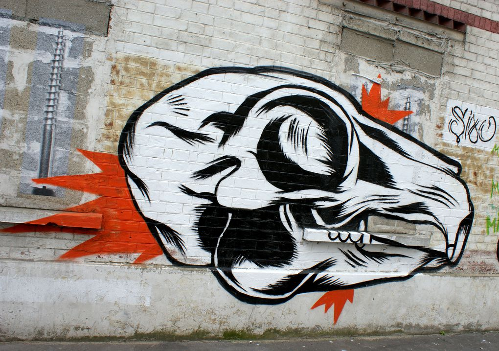 Album - Graffitis-Dept-93-divers Tom 001