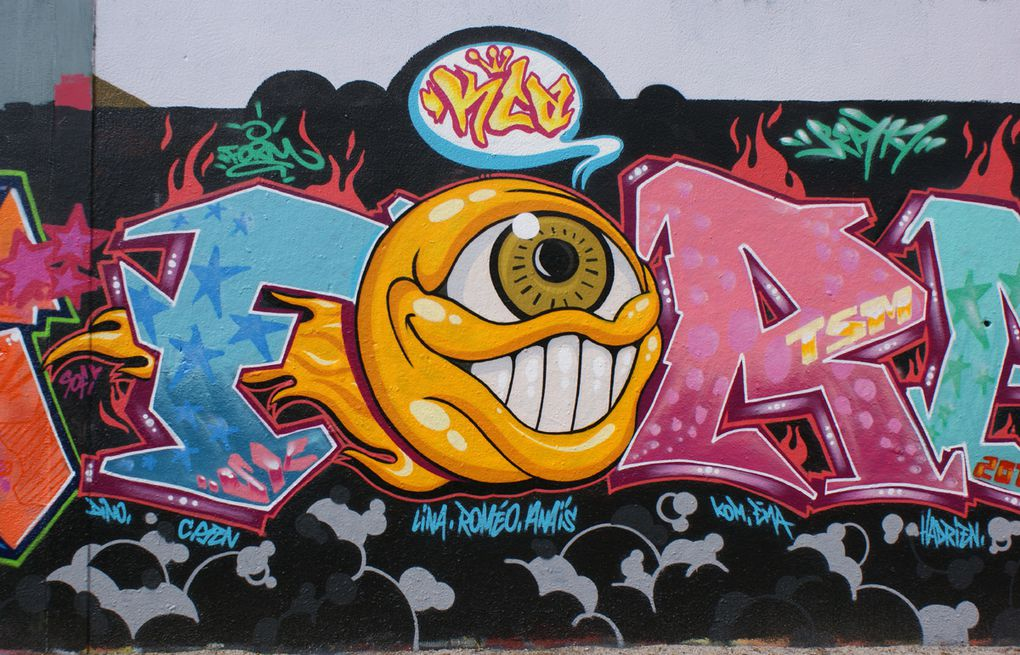 Album - Graffitis-IVRY-sur-Seine-Tom-011