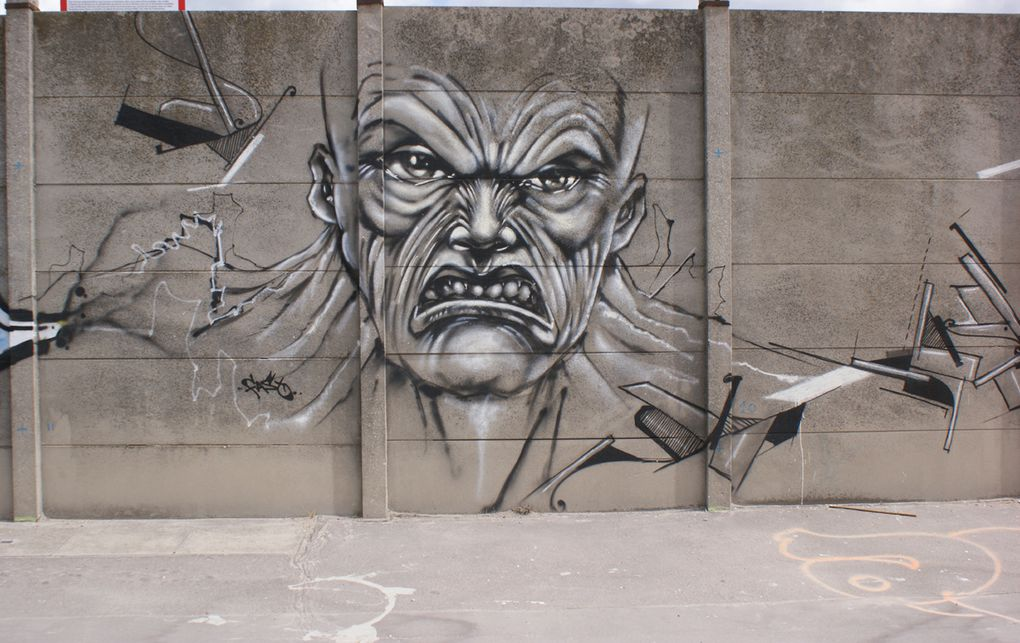 Album - Graffitis-Saint-Ouen-tom-003
