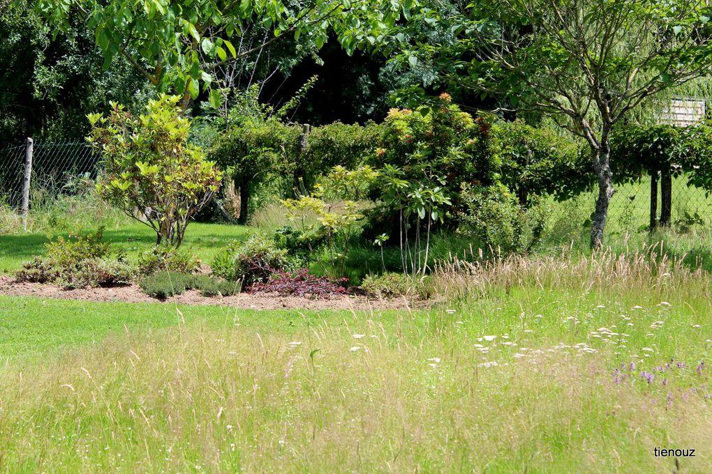 Album - mon-jardin
