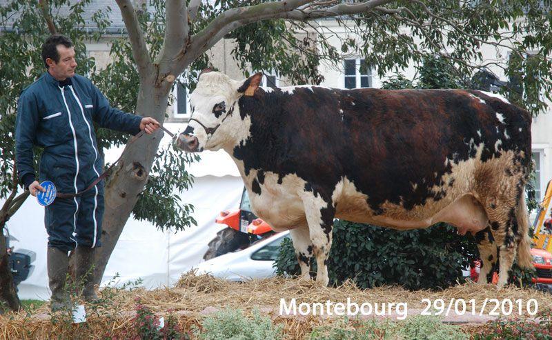La foire de la chandeleur à Montebourg.2 009, 2 010, 2 011