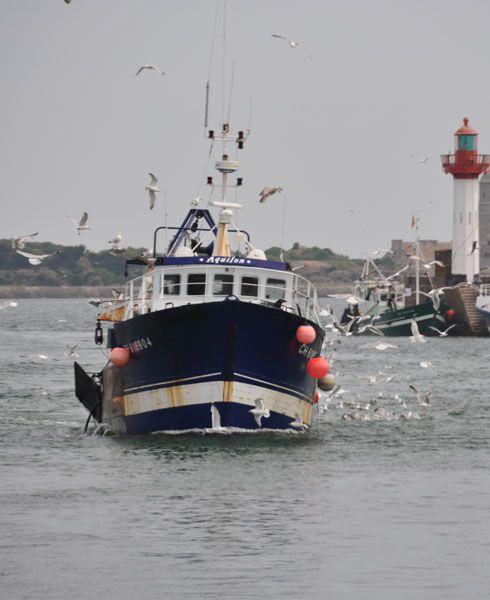 Des images liées à la pêche.