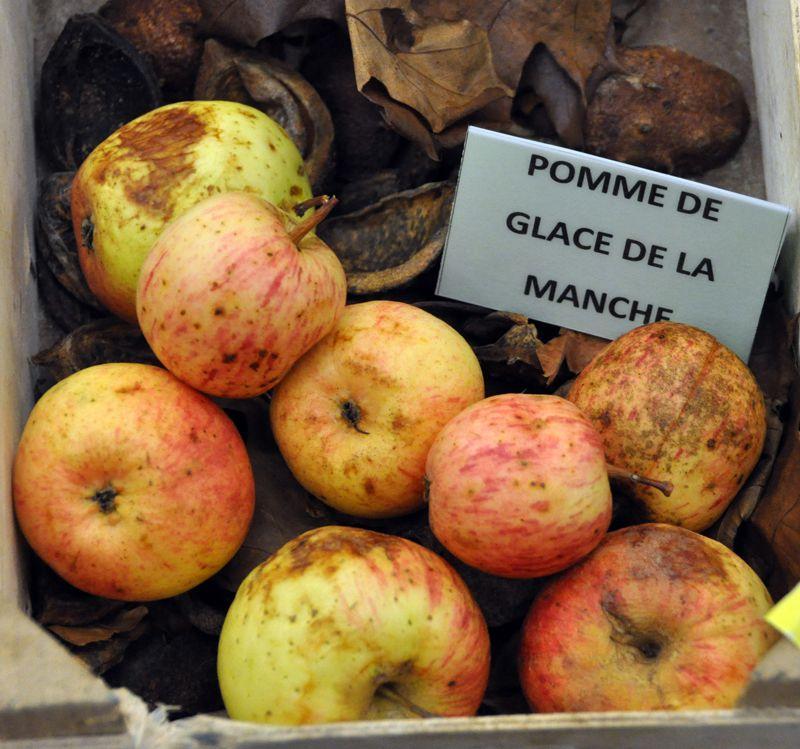 Album - Pommes-cidre