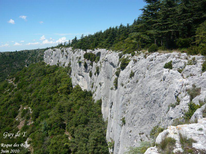 Circuit à la Forêt de Cèdres (Petit Luberon) au départ de Lacoste.