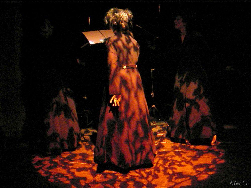 """Lecture d'après  """" L'éloge de l'ombre """"dans le cadre de l'événement Artistique et culturelle de la ville de Bourg en Bresse en Mai 2010"""