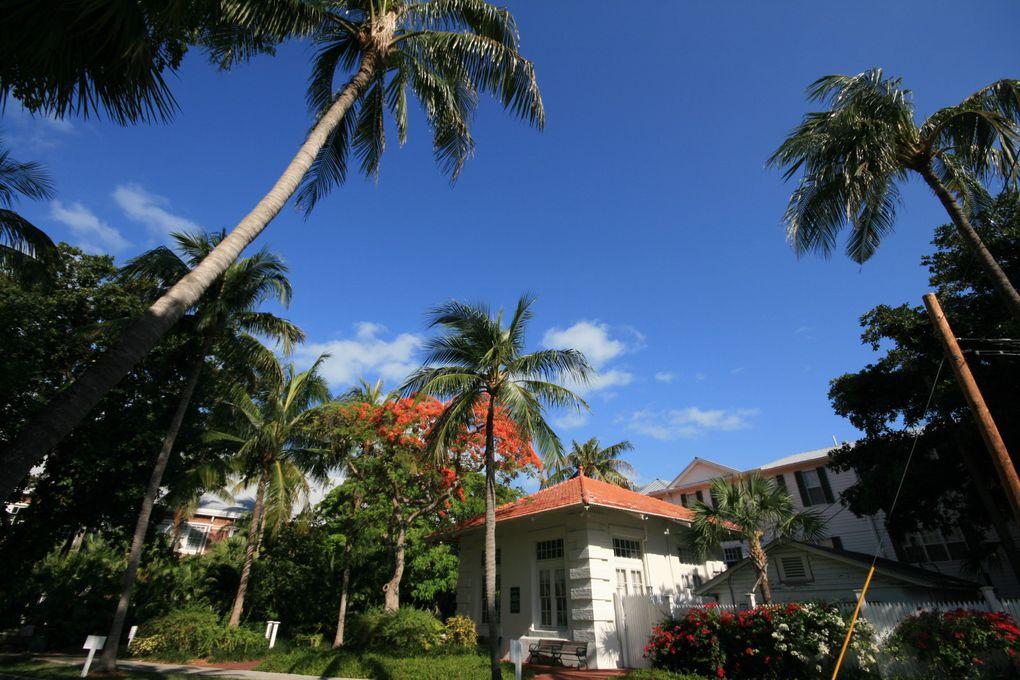 Album - Floride