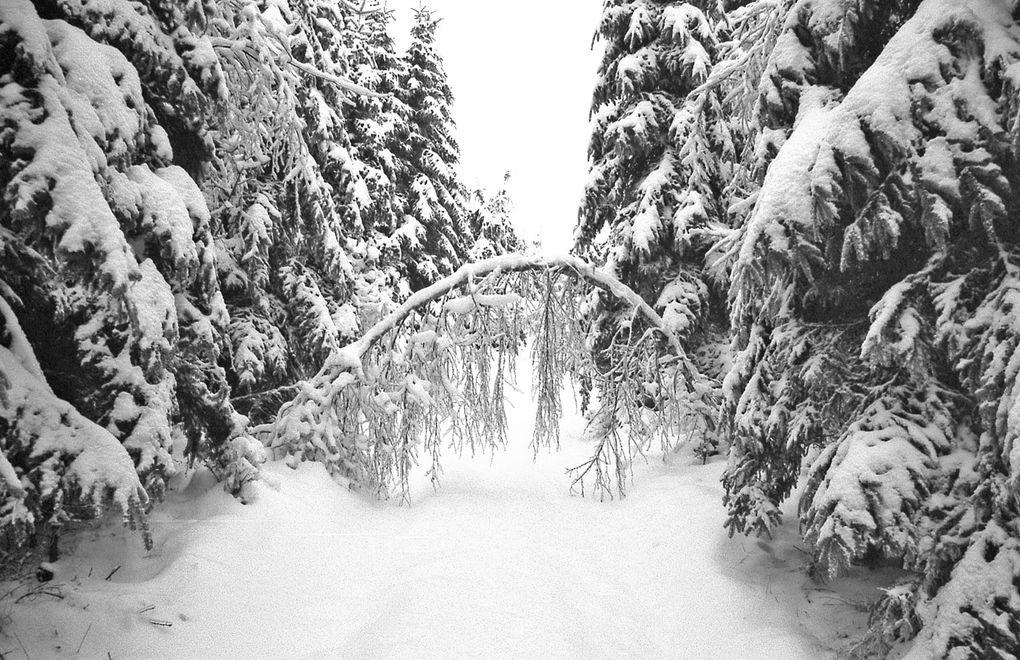 Album - Paysages d'hiver