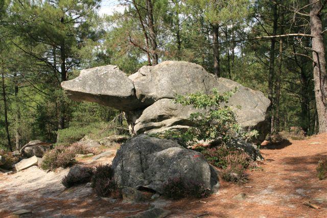 Photos de sites remarquables en forêt de Fontainebleau, dans le massif des 3 pignons et près de Larchant.