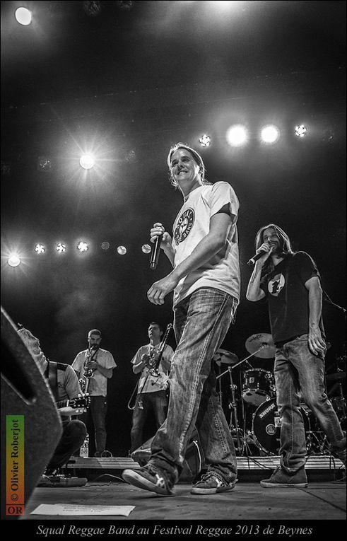 Album - Festival-Reggae-2013-Beynes-Squal-Reggae-Band
