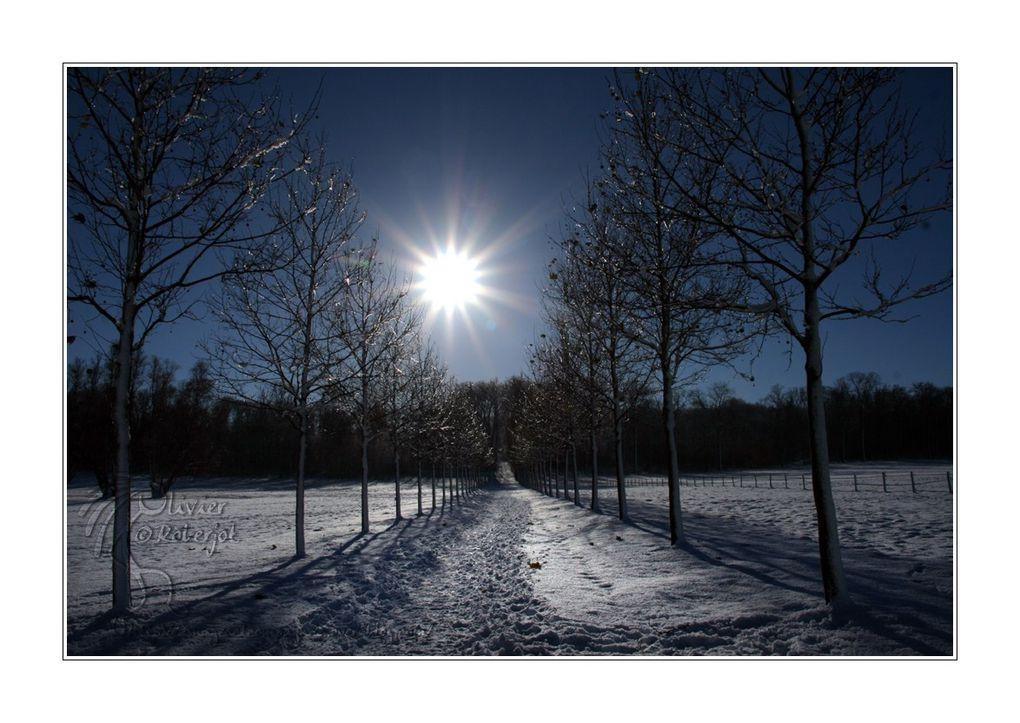 Une série de photo de neige...sous le soleil.