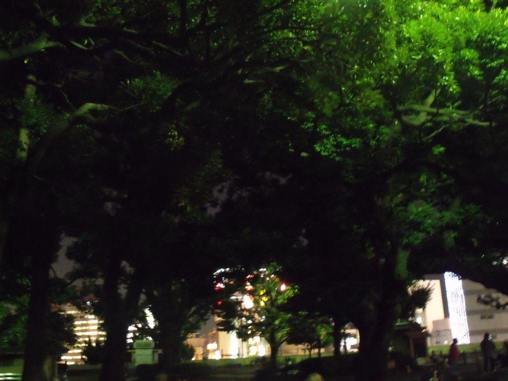 Album - Tokyo by night