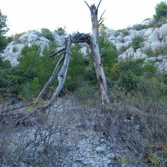 Randonnée du 11 novembre 2012 au départ de la maison forestière de la Gardiole