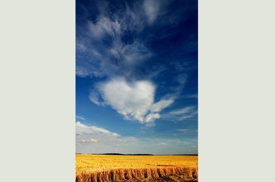 Album - nuages