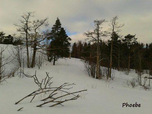 Album - HELSINKI-FINLANDE