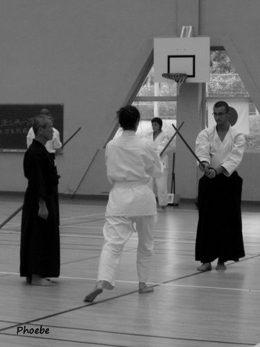 Stage International de kenjutsu, Saint-Brice (95)