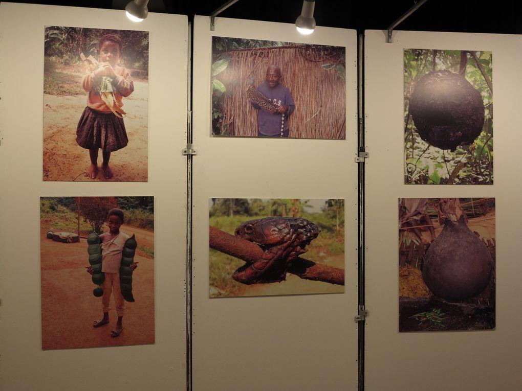 Album - 18ème Salon de la Photographie 2013 à Olympe de Gouges