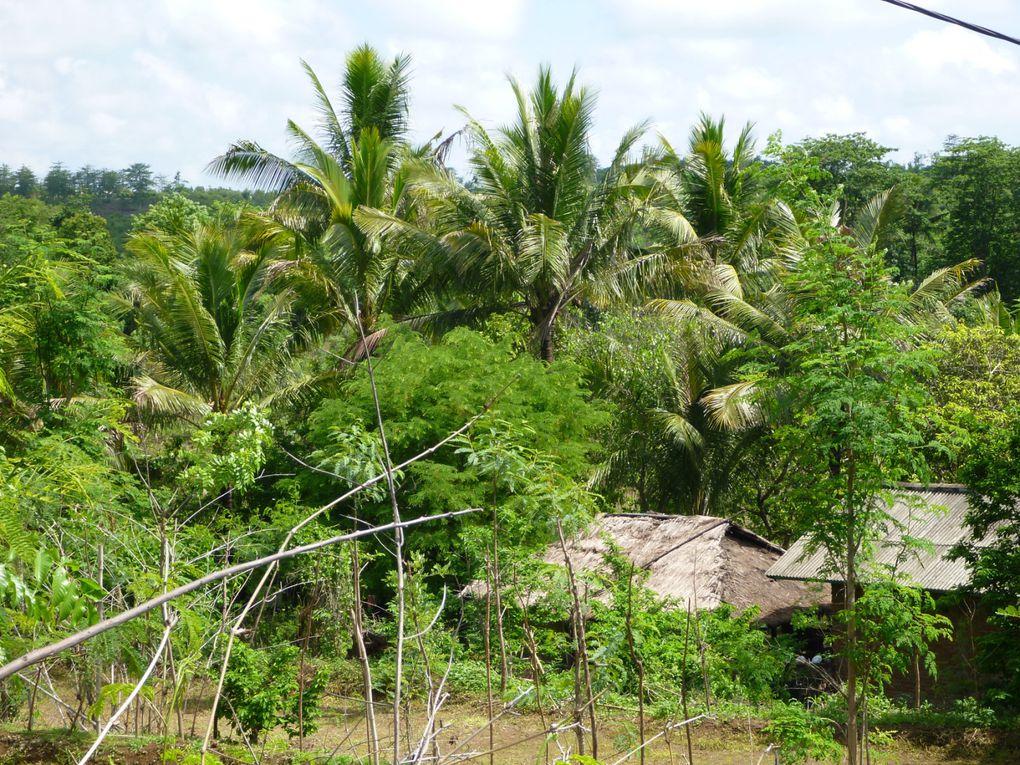 Lombok (Indonésie), décembre 2014