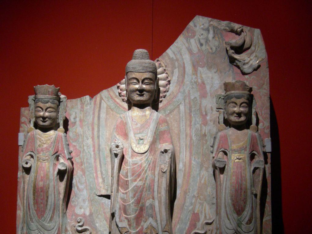 Album - Shandong-mai-2011